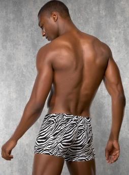 Doreanse - Zebra Desenli Erkek Boxer Doreanse 1814 (1)